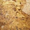 Various fossil imprints