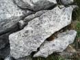 Weathering surface of limestone block