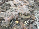 Interesting man-made rock, melted carboniferous rocks and materials from the old steel works.