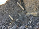 Carboniferious Spoil at Whitehaven
