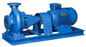 Pumps and motor