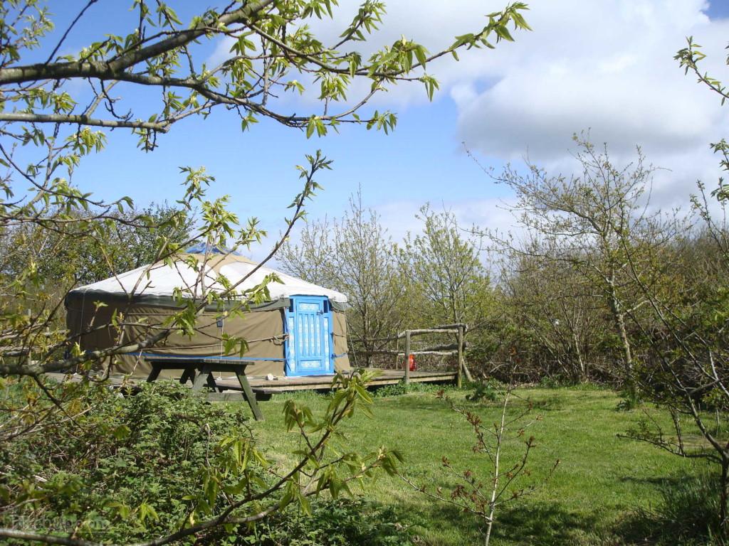 anglesey-tipi-and-yurt-holidays-yurt-oak-yurt-3