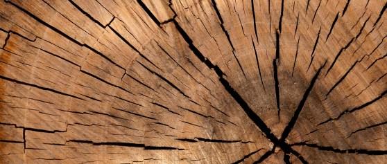 Cennik na drewno