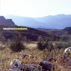 Braintax - Panorama