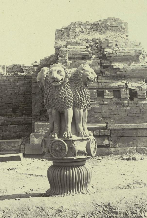 Photograph of the Lion Capital at Sarnath Uttar Pradesh by Madho Prasad c.1905