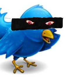 Twitter-Logo UK human rights blog