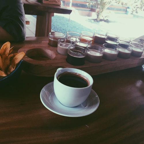 Yeah I Drank Coffee Made From Animal Poop In Bali