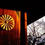靖国神社 ~夕日に照らされる境内の桜~