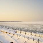 オホーツク海の流氷