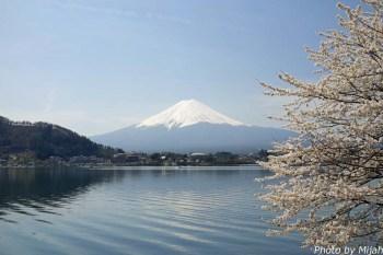 河口湖・桜02