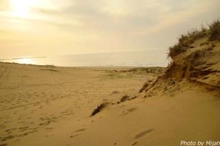 鳥取砂丘21