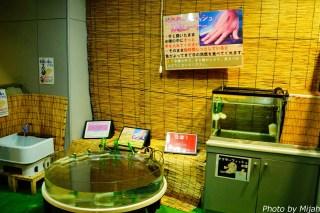 salmon-museum17