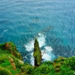 海鳥の島、天売島 ~レンタサイクルで島内を駆け巡る~