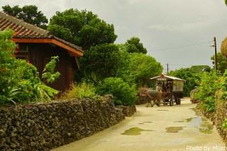 taketomijima13
