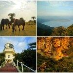 都井岬 ~馬、灯台、絶壁の神社…多彩な魅力が満載の岬を周遊する~