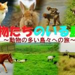 動物たちのいる島へ ~国内の動物の多い島々への旅~