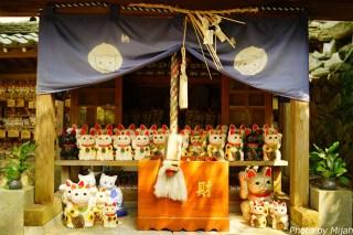 shikokutabi-day4-10