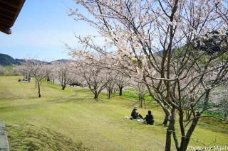 shikokutabi-day2-45