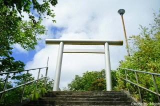 ogasawara-day2-14