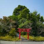 弁天山 ~徳島の日本一低い自然の山を登頂する~