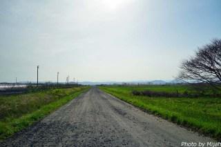 nanohana-road21