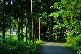 koiyamagata34