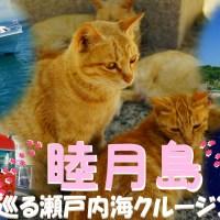 猫島・睦月島へのアクセス ~船を乗り継いで行く瀬戸内海クルーズを楽しむ~