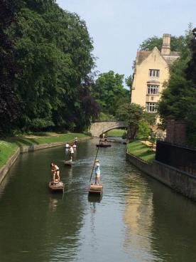CambridgePunting
