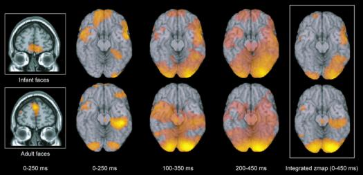 Реакція мозку на симпатичних дітей (дослідження платформи PLOS ONE).