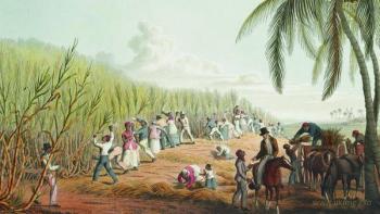 Стратегия управления рабами на Карибах