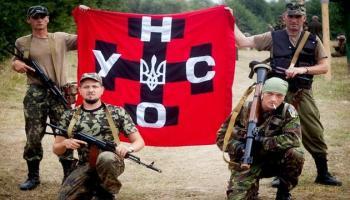 Націоналісти підтримали в другому турі Порошенка