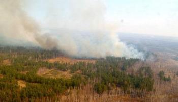 В Курганской области введен режим ЧС из-за массовых пожаров