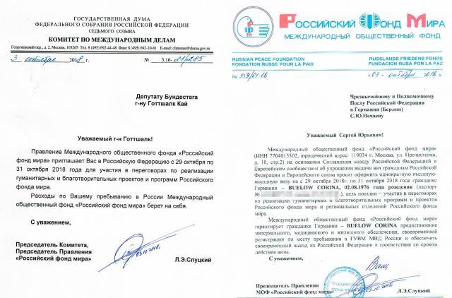 """Документы подтвердили связь Кремля с """"желтыми жилетами"""" и немецкими нацистами"""