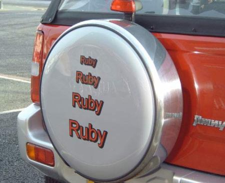 Stainless Steel Wheel Cover