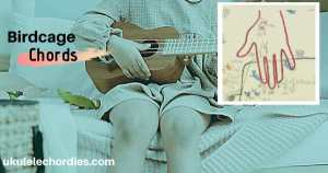 Read more about the article Novo Amor – Bridcage Ukulele Chords