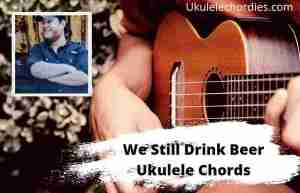 Read more about the article We Still Drink Beer Ukulele Chords By Luke Combs