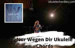 Read more about the article Nur Wegen Dir Ukulele Chords By Wincent Weiss
