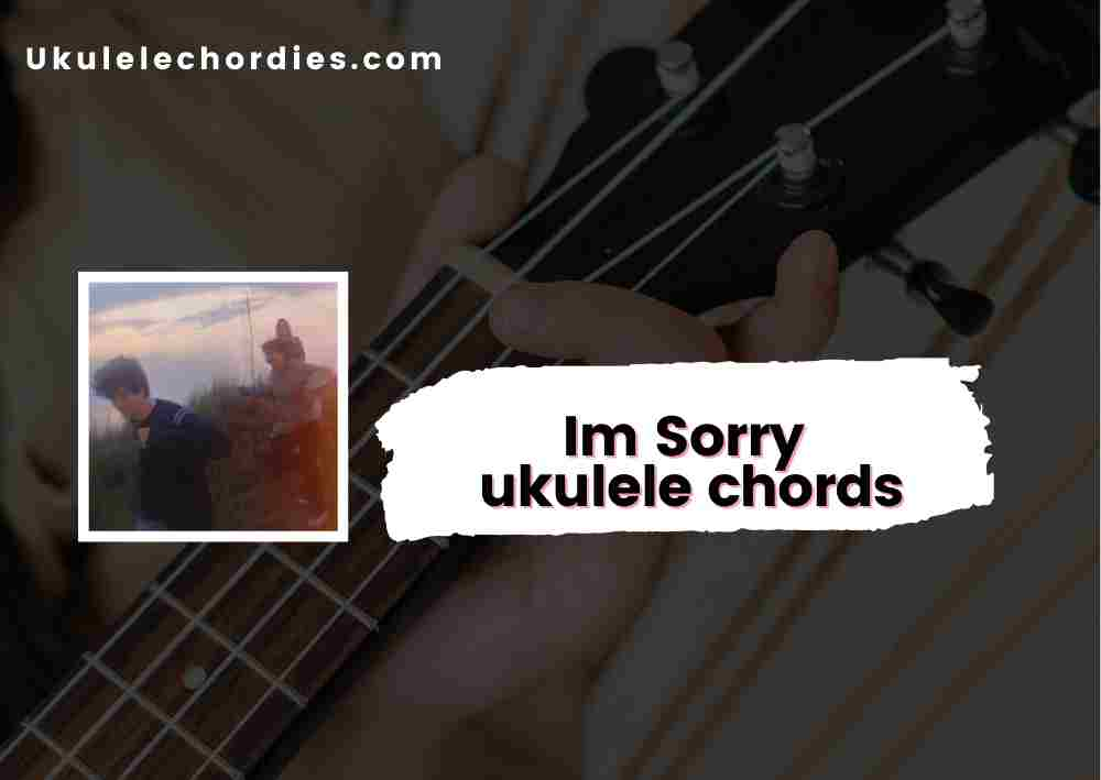 Read more about the article Im Sorry Ukulele chords by Blanks (Simon de Wit)