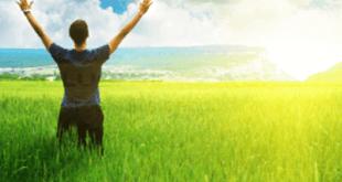 Pertanian Organik Solusi Pertanian Modern