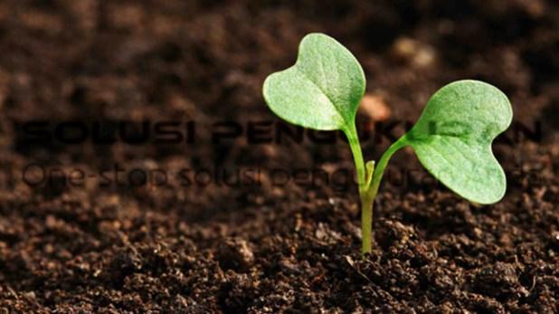 hubungan-ph-tanah-terhadap-kesuburan-tanah