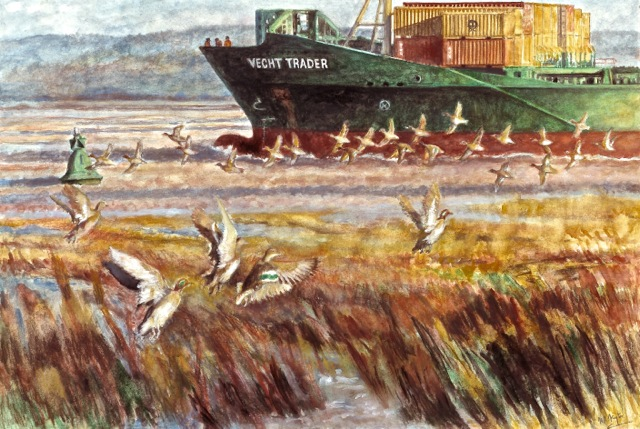 October teal in the Bristol Channel