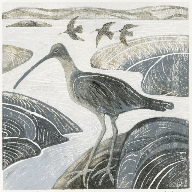 No. 1 Curlews in the Estuary