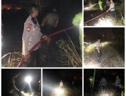 Hutan dan Lahan Tanjung Piayu Dilalap Api