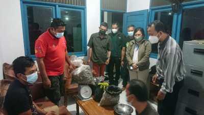 Ditjen Gakkum KLHK Tahan Dua Pelaku Pedagang Sisik Trenggiling di Kalbar
