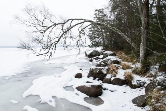 2017-02-05 Hissö