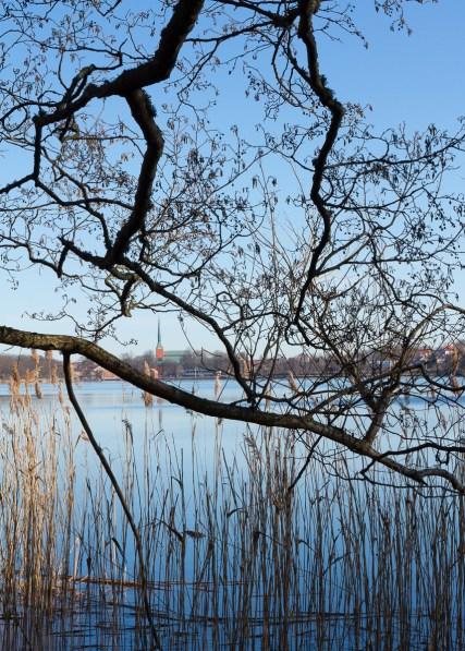 2017-03-24 Växjö domkyrka (Växjösjön)