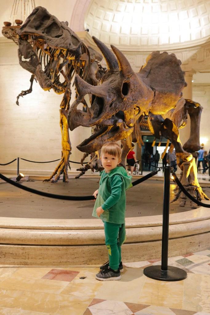 Natural-History-Museum-2807