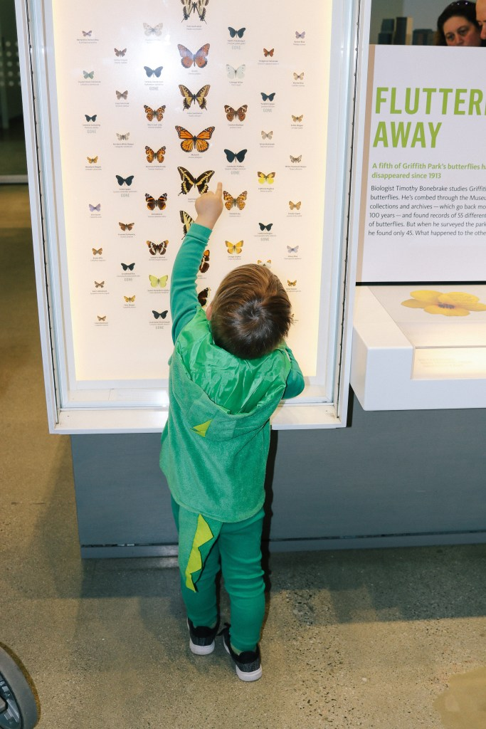Natural-History-Museum-2850