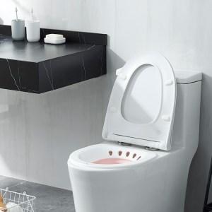 Sitz Bath No Squat