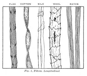 Fabric Fibres Longitudinal